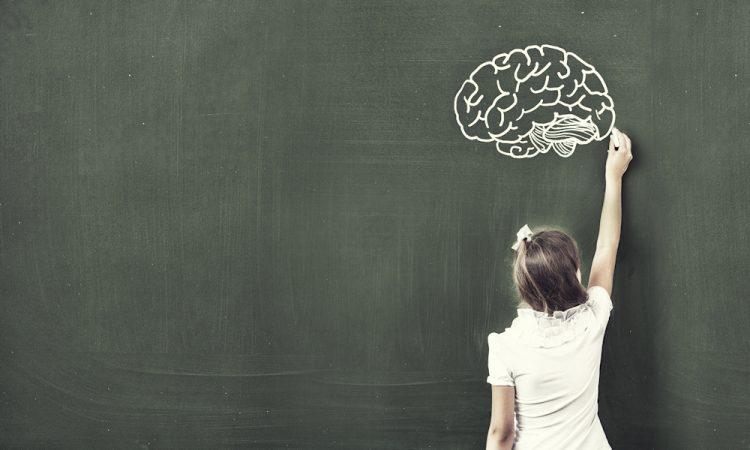 Discussie over leerstijlen: focussen op alleen verschillen onverstandig