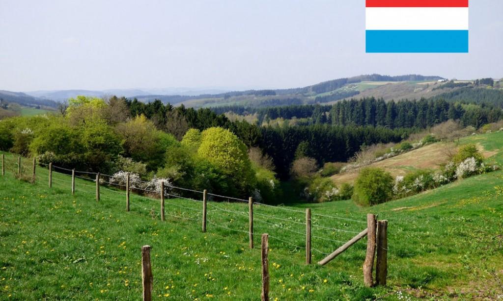 In hoeverre beïnvloedt meertaligheid het Luxemburgse onderwijs?