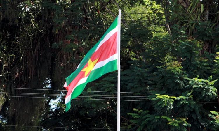 Beroepsonderwijs in Suriname: vernieuwing en verwarring