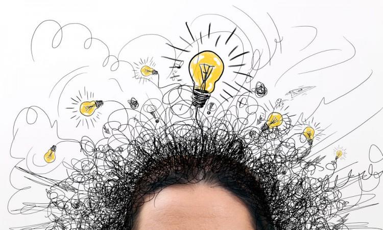 Loopbaandossier wel of niet verplicht voor theoretische leerweg?
