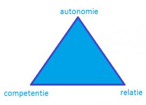 driehoek autonomie competentie relatie - motivatie